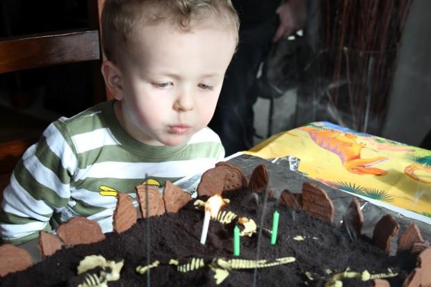 M's Prehistoric Dino Party!