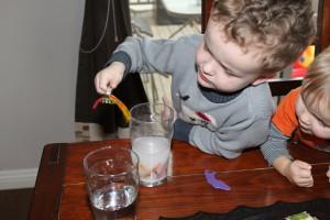 Gummy Worm Science 14