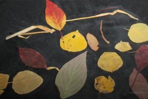Leaf Man Art 27