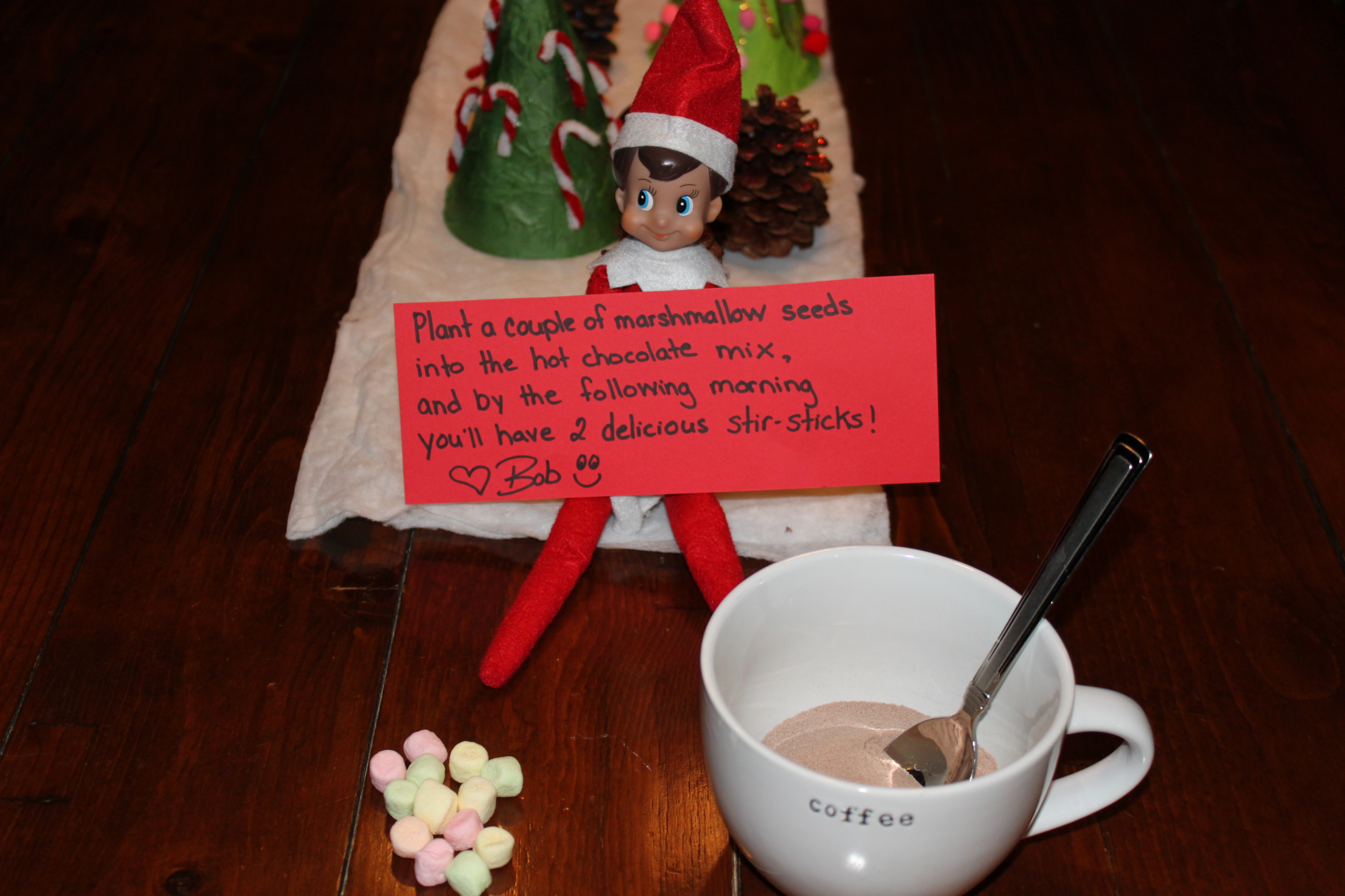 Elf On Shelf First Day Letter