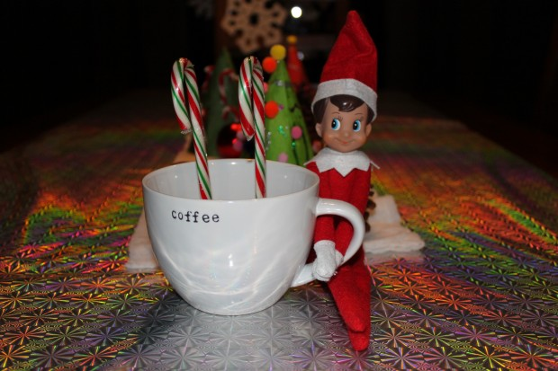 The First 2 Weeks with Bob, our Elf on the Shelf