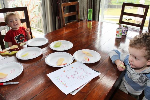 Apple Taste Test and Mini Apple Pies!