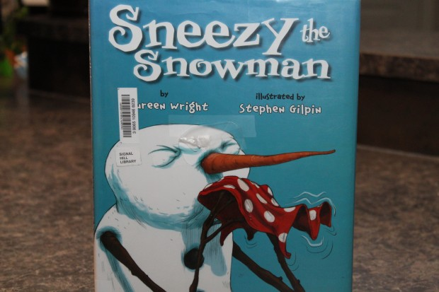 Sneezy the Snowman: Melted Snowman Pictures