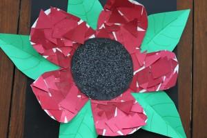 Poppy Craft 16