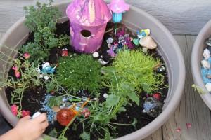 fairy gardens 29