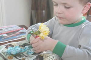 rainbow carnations 22