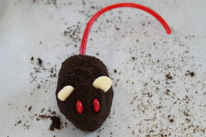 Chocolate Mice 11